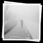 """The """"Fog"""""""